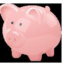 Des Moines Car Wash Fundraiser piggy bank